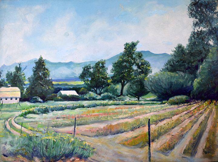 The Farm at Santa Fe and 470 - Blossart