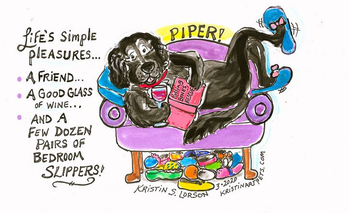 Piper! She loves her mom's slippers! - KristinArtPets and more By Kristin Lorson