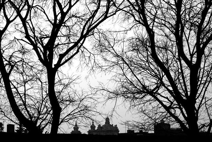 Winter - JJ Photography