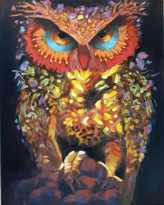 an owl - iana.m