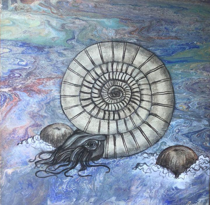 Ammonite - Eppita