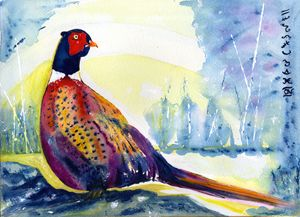 Golden Pheasant - CALIOPE (Cali Norton)