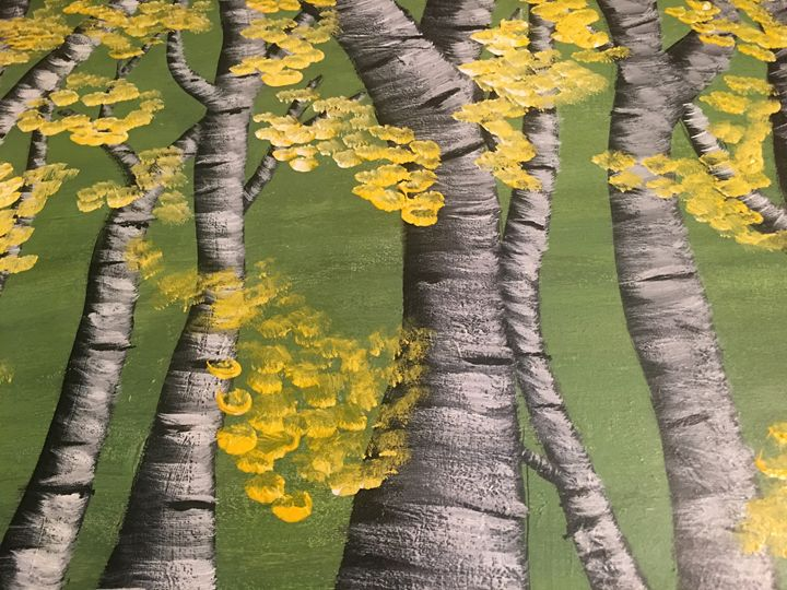 Aspen Trees in Spring - Discover Color by Liza