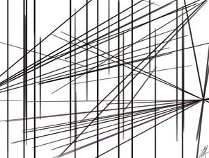 The lines