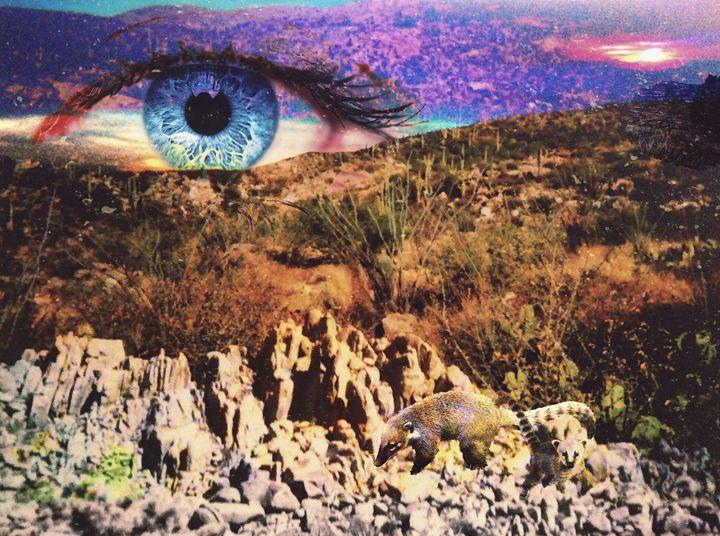 Desert Eye - Gibbothy