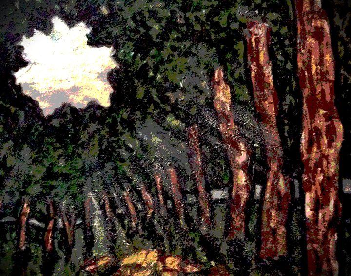 Sun Trees - Gibbothy