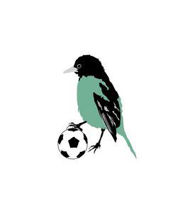 SOCCER BIRD