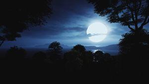 Lost Islands - Moonshine