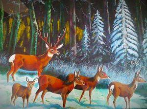 Wildlife scenery