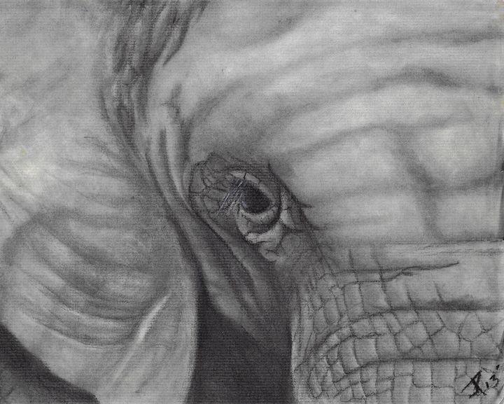 Majestic elephant - JoJo K