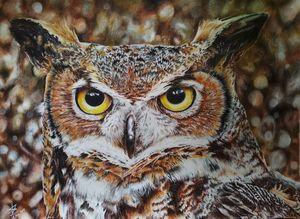 Owl Hyperrealism