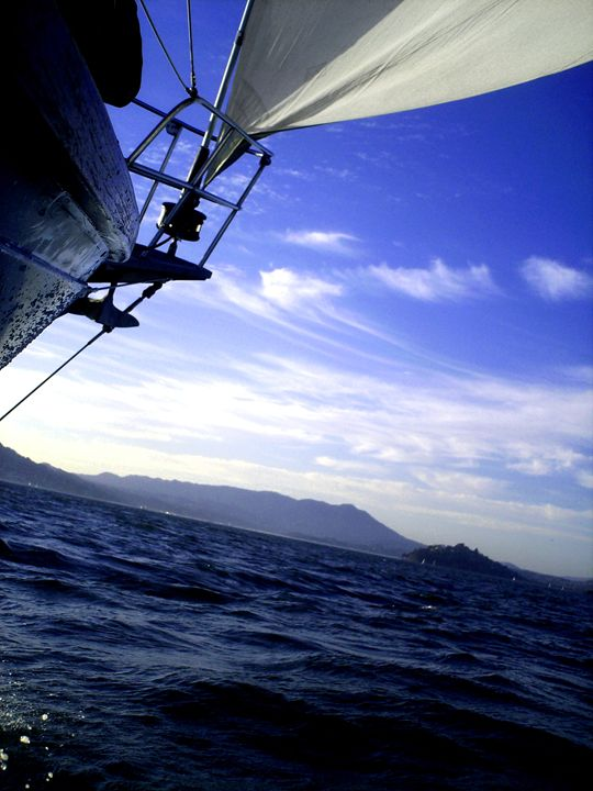 The Bay - Ricky Starling