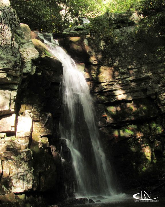 """Gentry's Waterfall #5 - Ronnie """"Flash"""" Norris Photography"""