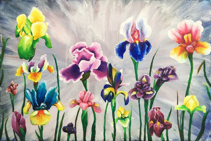 Field Of Iris Flowers - Dominique Baudrillier