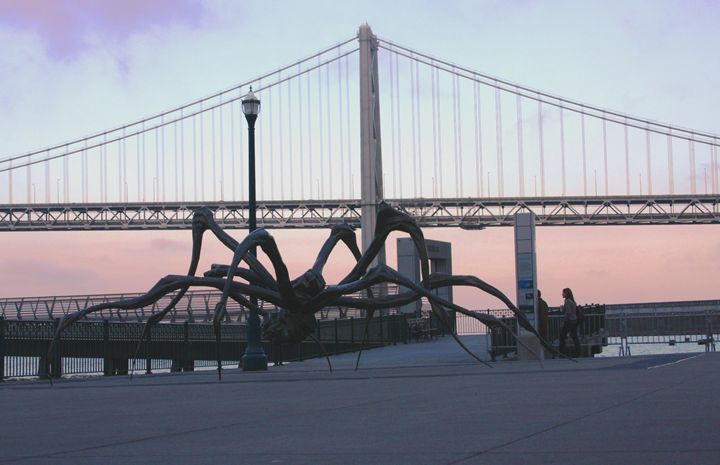 Crouching Spider & Bay Bridge Frisco - JT Simmonds