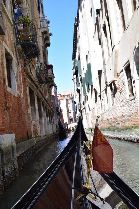 Venice - Alexandra Obar