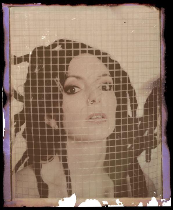 tampered polaroid - lumenesca