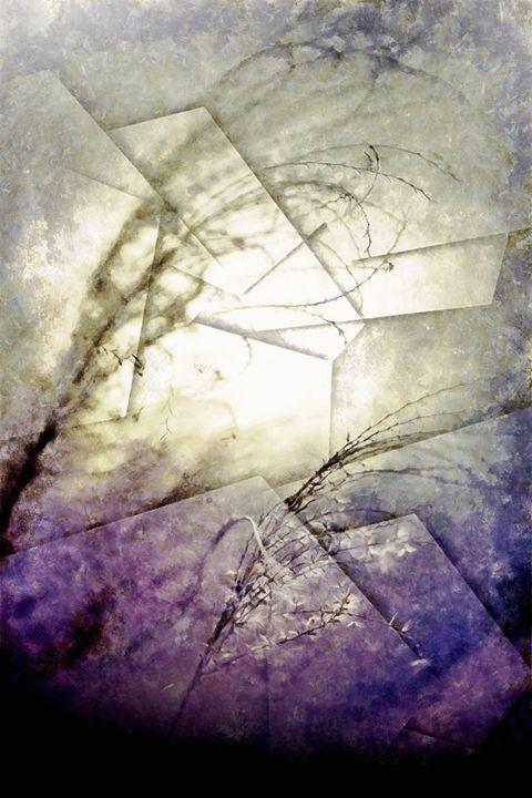 Wind - Karl J. Struss