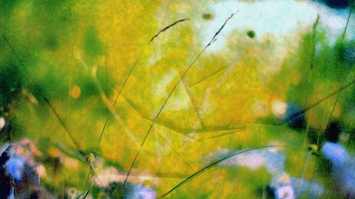 SUMMER Dream - Karl J. Struss