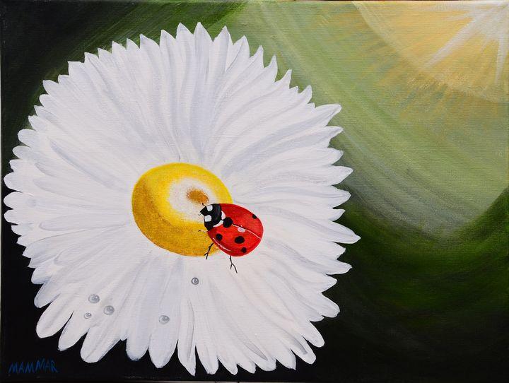Ladybird on a flower - MAMMAR