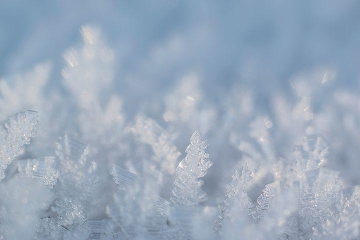 Frozen - Photography & Illustration by Iveta