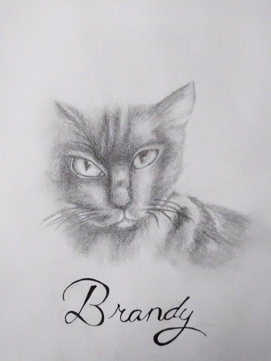 Brandy - Melodys Arts