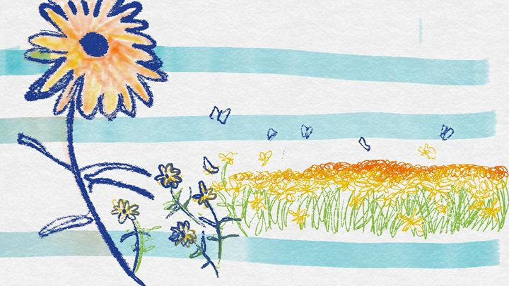 sunset-colored flowers - Sketches, paintings, doodles