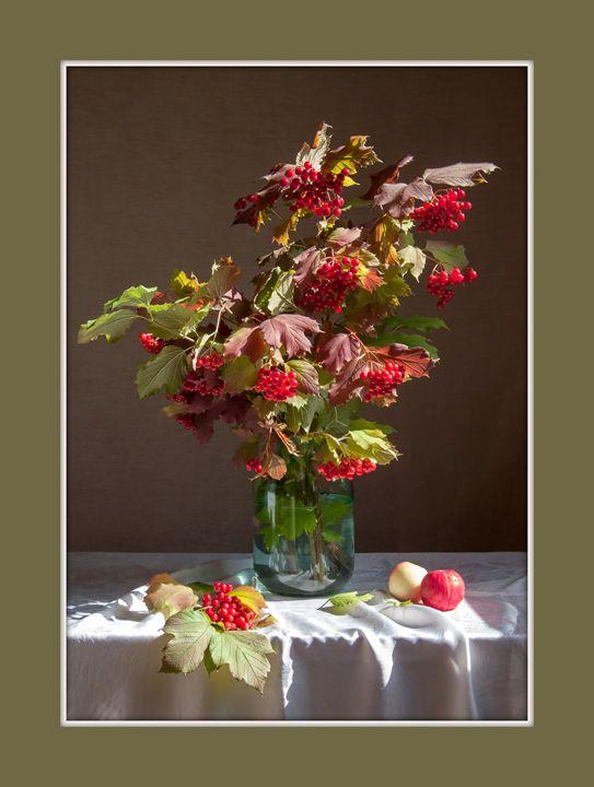 Viburnum Red Berries - Sergey Alekseev