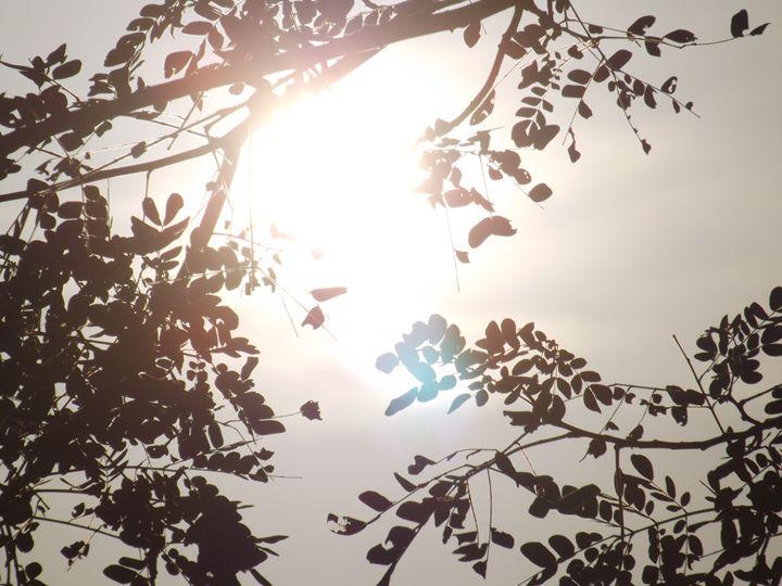 The Sun through the leaves - 1 - Portraits