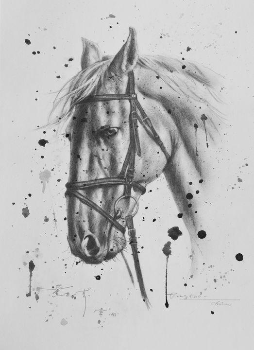 Drawing horse #6 - hongtao-art studio