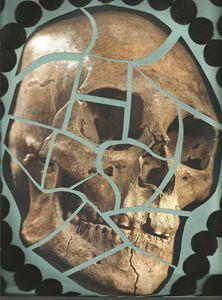 pickin apart at the skull - Bomb Art