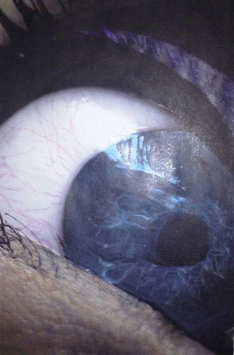 Eye see you! - Bomb Art