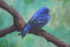 Dapper in Blue - R. Cels