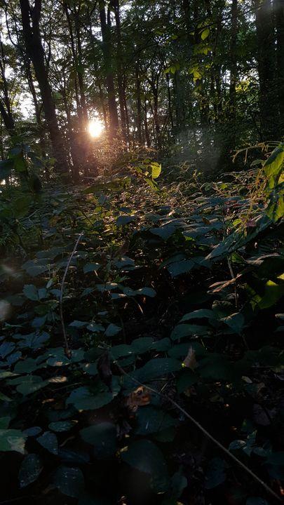 Autumn Sun - Junika