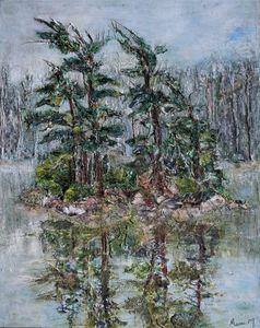 Windswept Pine Trees