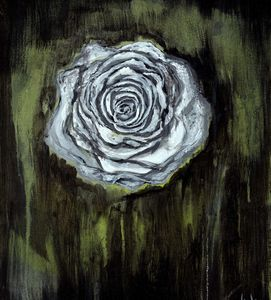 Blooming in the Dark