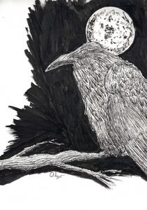 The Raven Pen and Ink