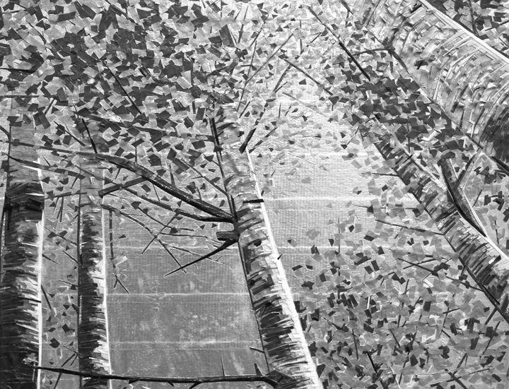 Tapeart of Aspen Grove - Ezetary Art