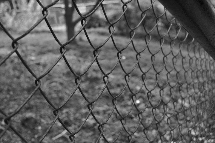 gate - Amanda Vogtman