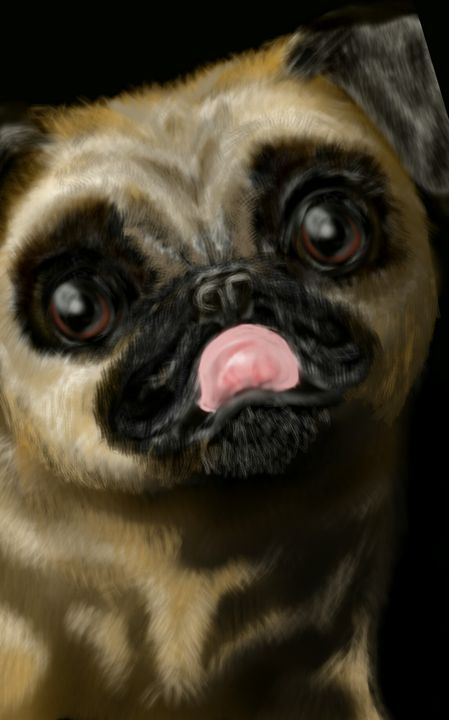 Pug beautiful - Lyn Chapman