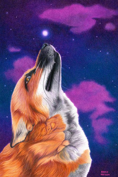 Finnegan Fox - Annie's Colored Pencil Art