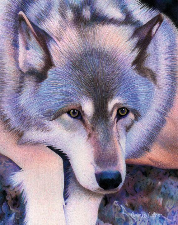 Gray Wolf - Annie's Colored Pencil Art