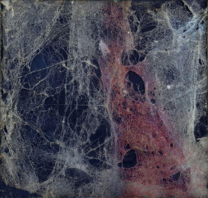 Ennio Morricone - Le vent, le cri - Cobweb art