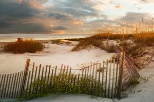 Sunset on the Jekyll Dunes - Stephanie Long