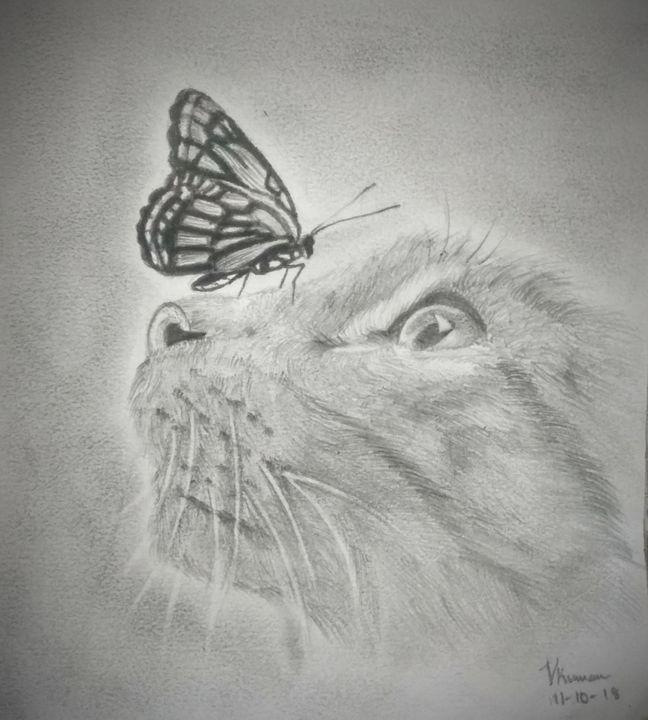 Chasing butterflies - VINEETH KUMAR
