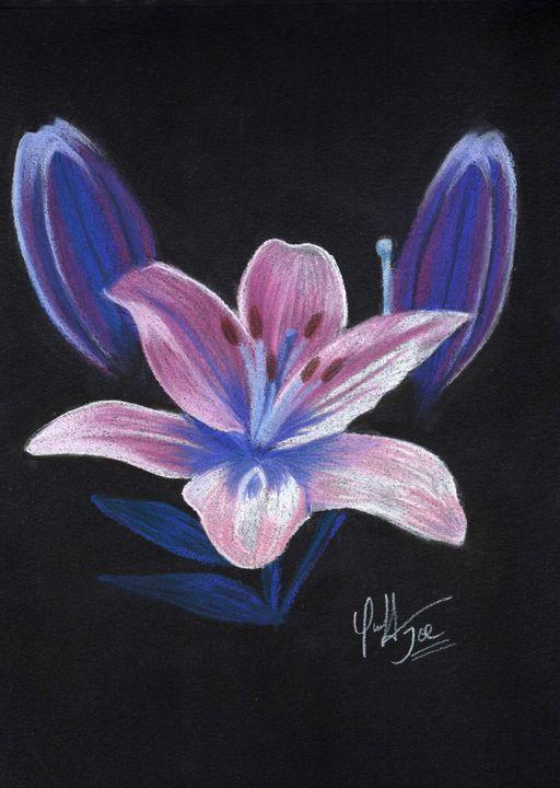 Lily night flower - Mayajoe27