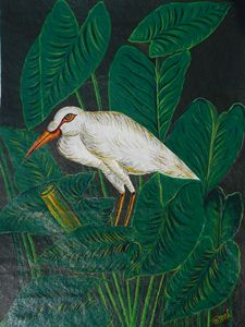 Fish in search egret