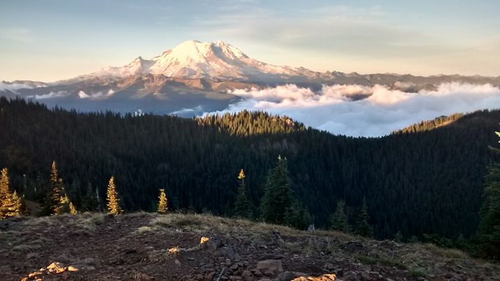Mt. Rainier Panorama - Wend Images Gallery
