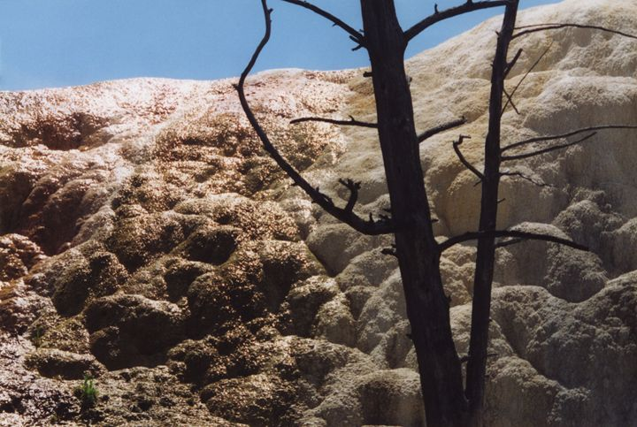 Mammoth Hot Springs Textures - Wend Images Gallery