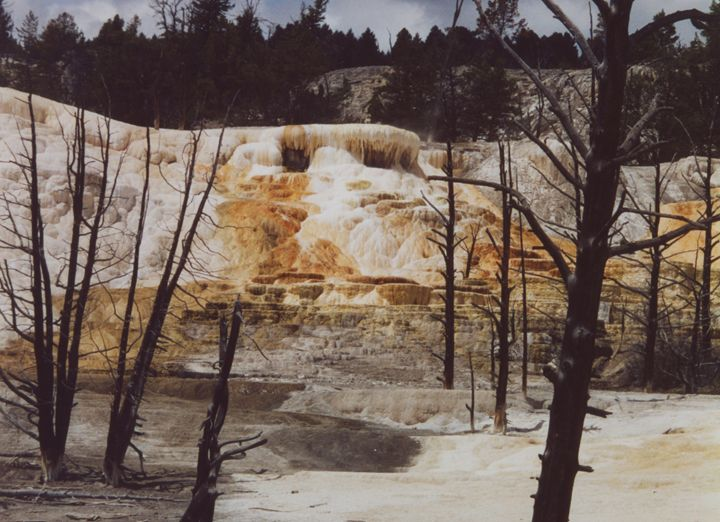 Mammoth Hot Springs - Wend Images Gallery